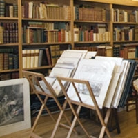 Libreria Antiquaria Fortuna Florence, Italy
